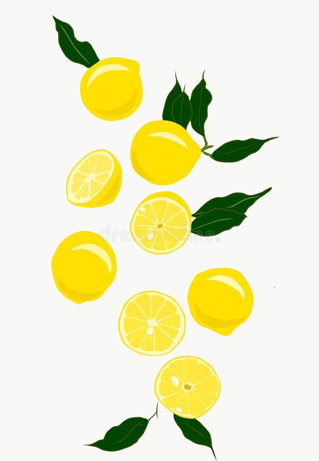 Vers gezonde citroenen vector illustratie