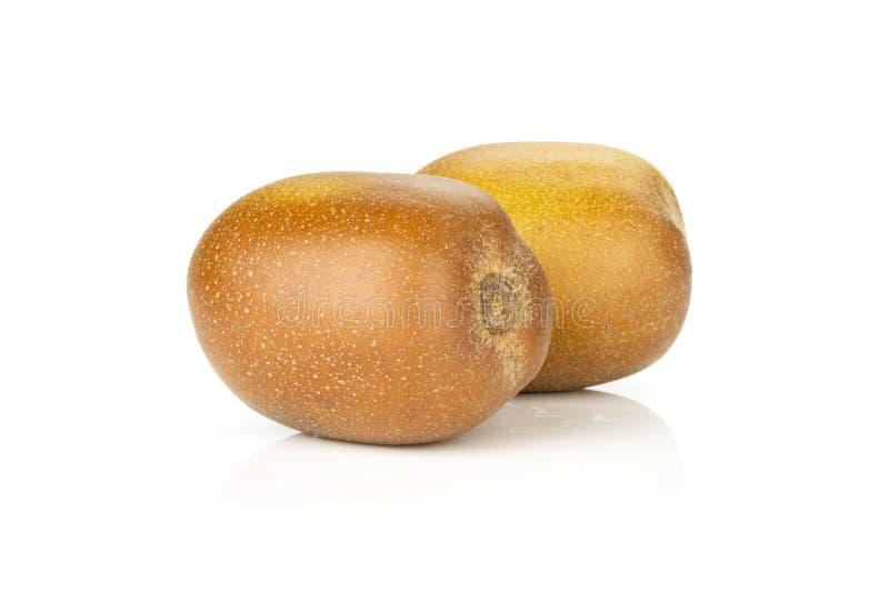 Vers gouden bruin kiwifruit sungold op wit stock foto