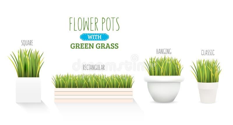 Vers groen gras in een pot Een reeks met verscheidene vormen van potten Element van huisdecor Het symbool van de groei en ecologi royalty-vrije illustratie