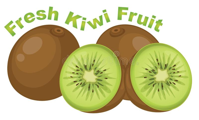 Vers kiwifruit op witte achtergrond vector illustratie