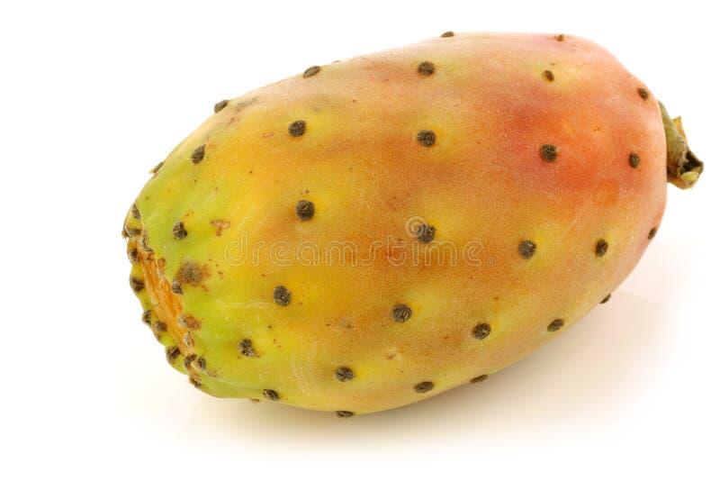 Vers kleurrijk cactusfruit royalty-vrije stock foto