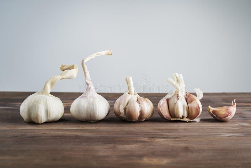 Vers Knoflook op houten achtergrond Stilleven met ruwe groente Concept gezond voedsel en nutritionÑŽ royalty-vrije stock afbeelding