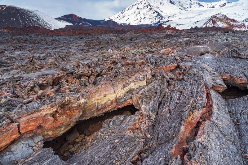 Vers Lava Field Berg op de achtergrond Het Schiereiland van Kamchatka, Rusland stock afbeelding