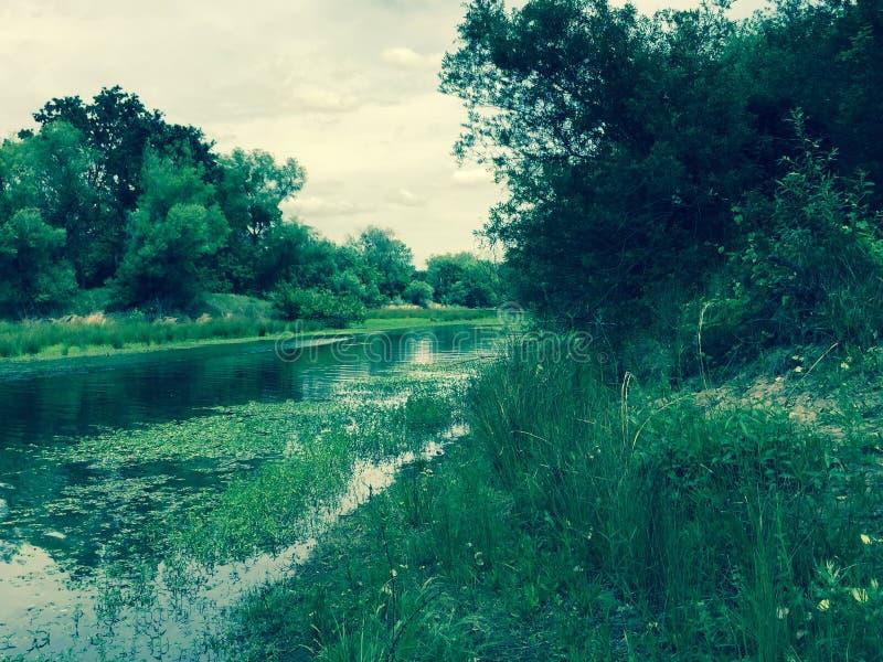 Vers le bas courant à la rivière photo libre de droits