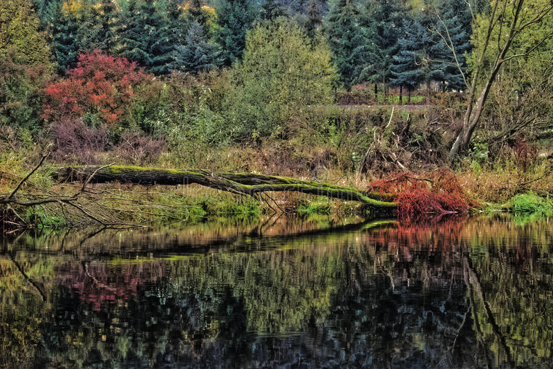 Vers le bas par le fleuve image libre de droits