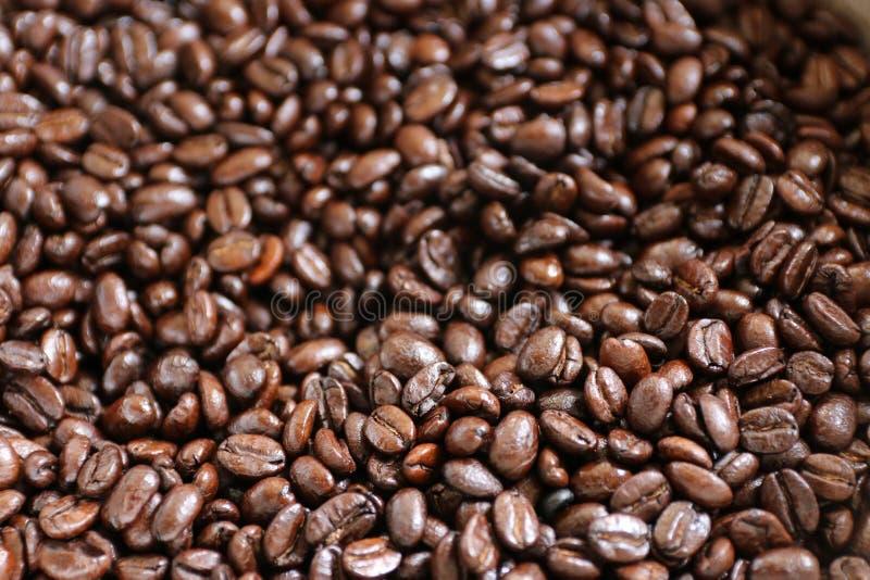Vers middelgrote geroosterde Arabica koffiebonen royalty-vrije stock afbeelding