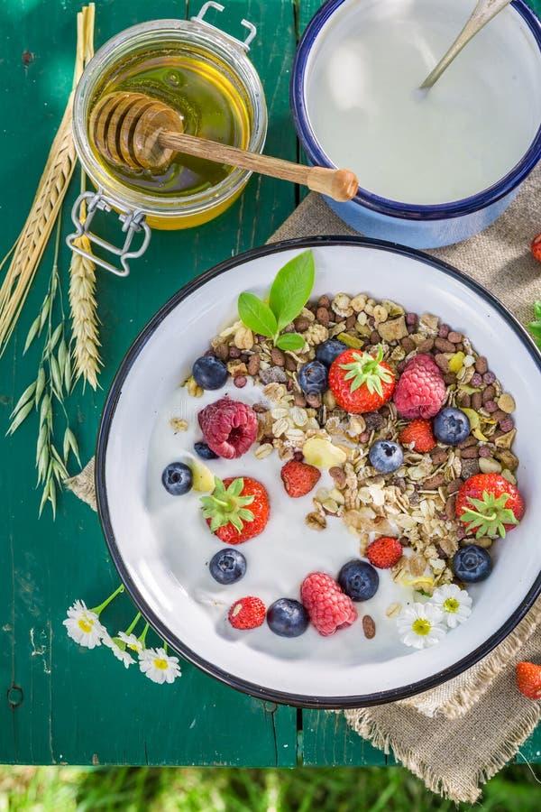 Vers ontbijt met yoghurt en bessen stock fotografie