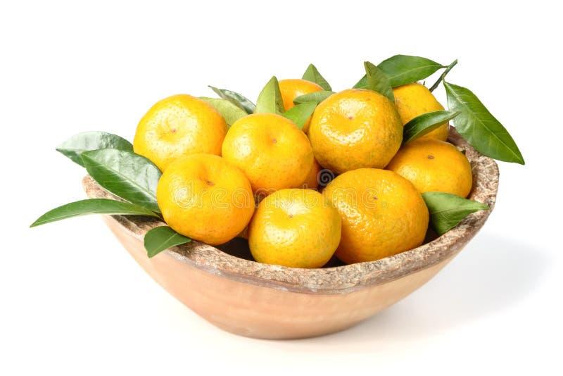 Vers oranje fruit royalty-vrije stock foto's