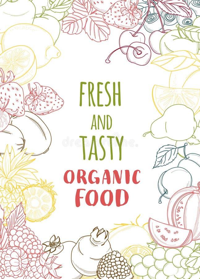 Vers organisch de vruchten en de groentenkader van de de lentezomer contour royalty-vrije illustratie