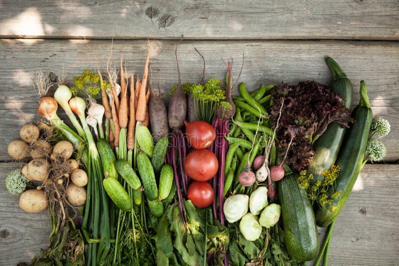Vers organisch ruw plantaardig voedsel Natuurlijk landbouwlandbouwbedrijf, gezonde oogst royalty-vrije stock fotografie