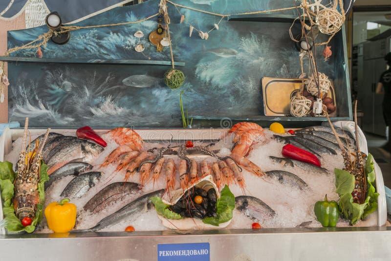 Vers Overzees Voedsel stock fotografie