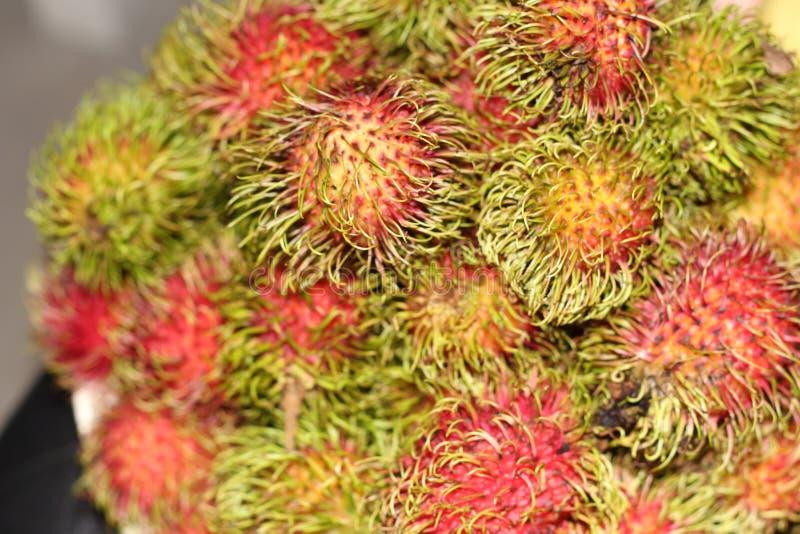 Vers rambutan fruit in Thailand royalty-vrije stock afbeelding