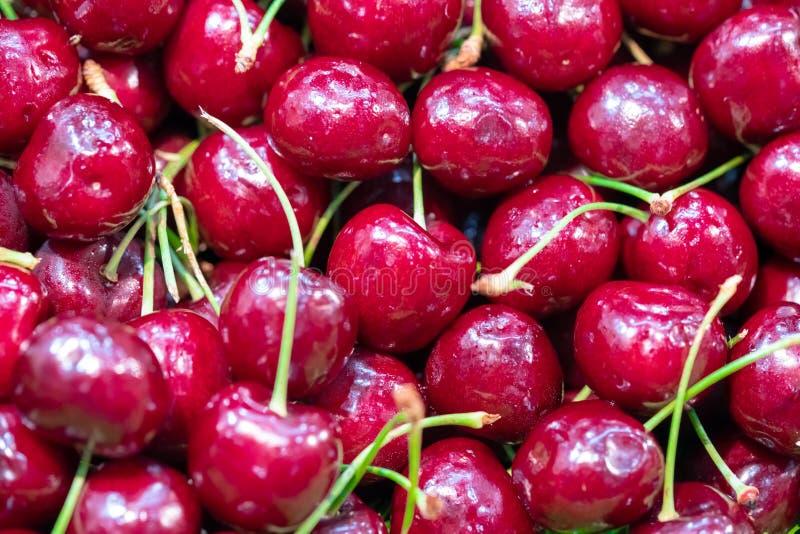 Vers Rood Rijp Cherry Fruit stock foto