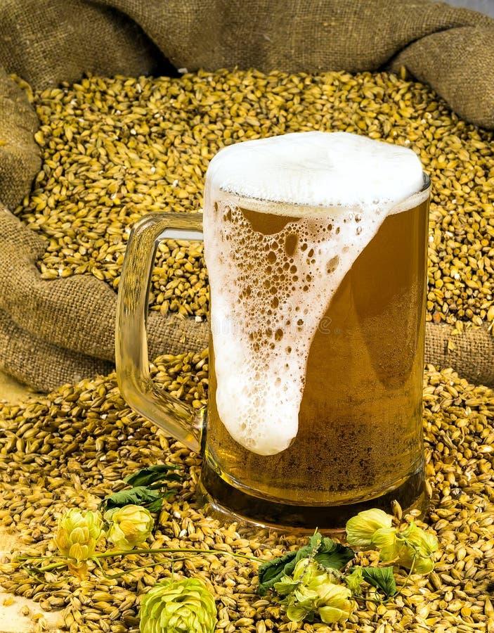 Vers schuimend bier in een glas stock afbeelding