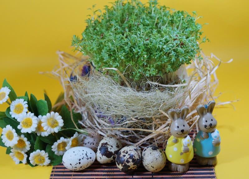 Vers tuinkers en konijn en paaseieren stock afbeelding