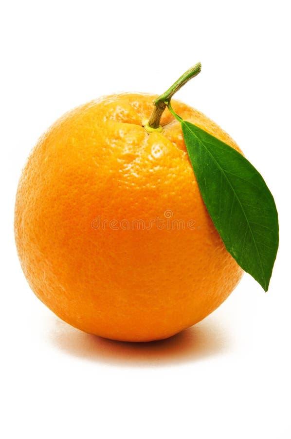 Vers Verlicht Oranje Fruit stock afbeeldingen