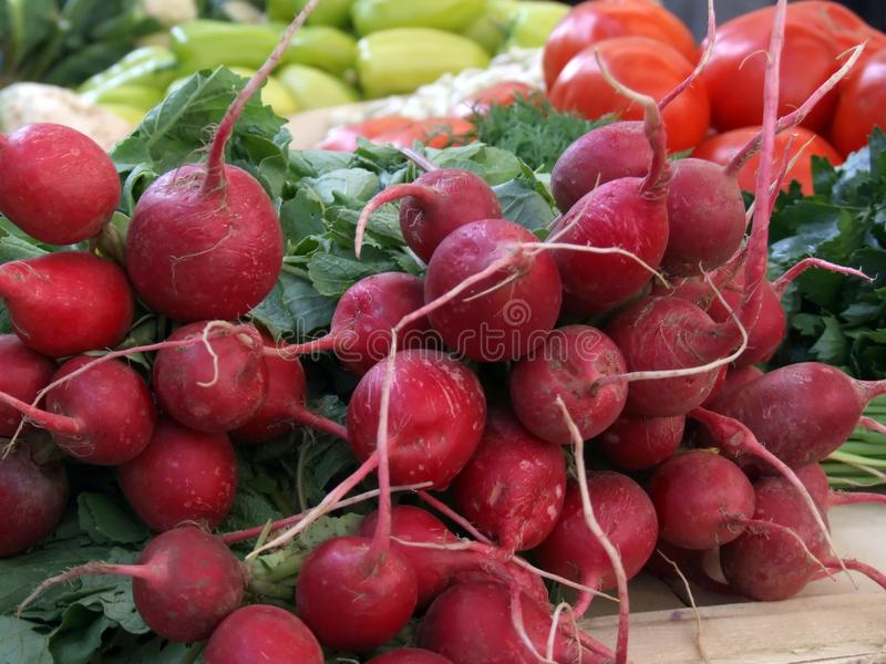 Vers Voedsel Op Markt Gratis Stock Afbeeldingen