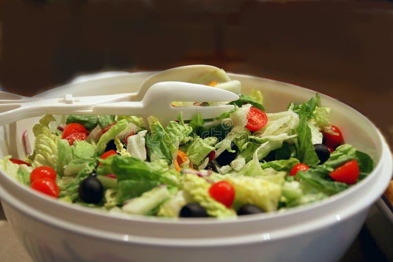 Vers Voorbereide Geworpen Groene Salade royalty-vrije stock foto