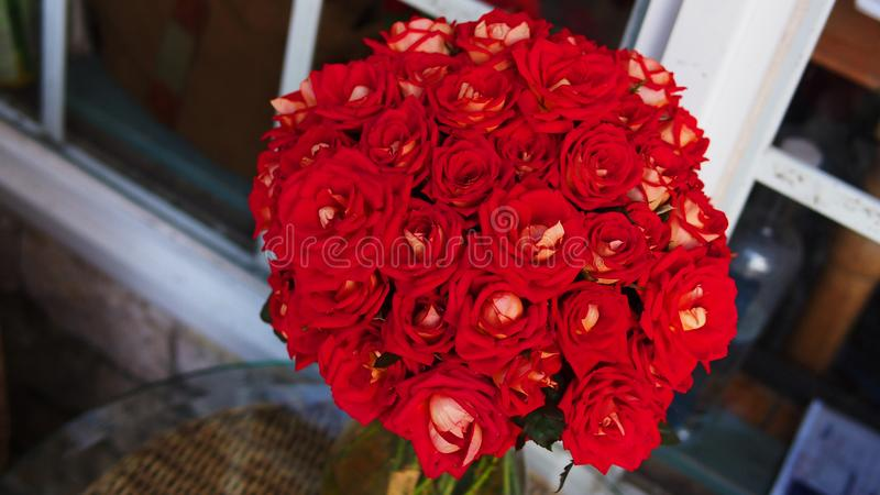 Vers Wit Rood rozenboeket in een vaas stock afbeeldingen