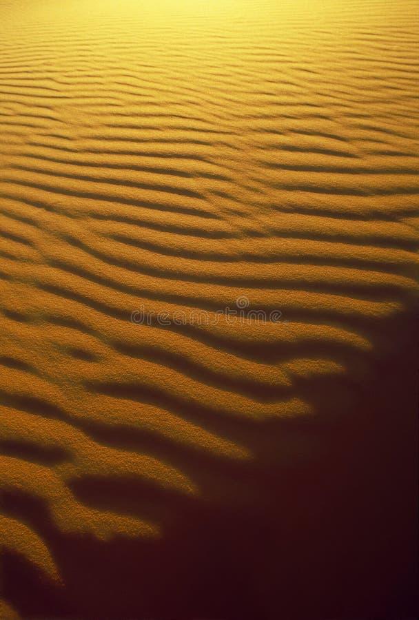 Download Versanden Sie Kräuselung-und Schatten-Muster Stockbild - Bild von leuchte, dünen: 40521