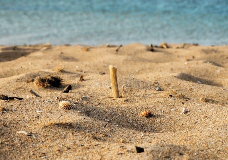 Versanden Sie Sommerstrand mit Seeoberteilen und Meer auf dem Hintergrund lizenzfreie stockfotografie