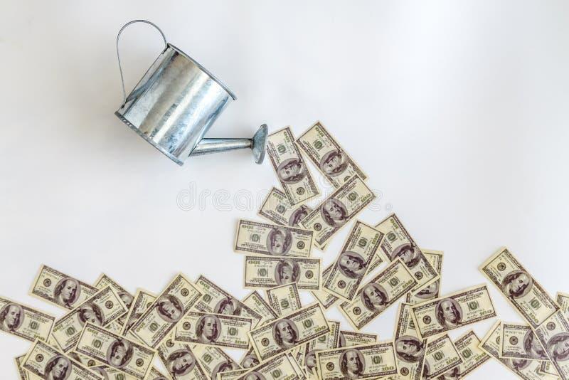 Versare-innaffiato dai dollari delle banconote dell'annaffiatoio su un fondo bianco Concetto, investimento, affare di partenza immagine stock