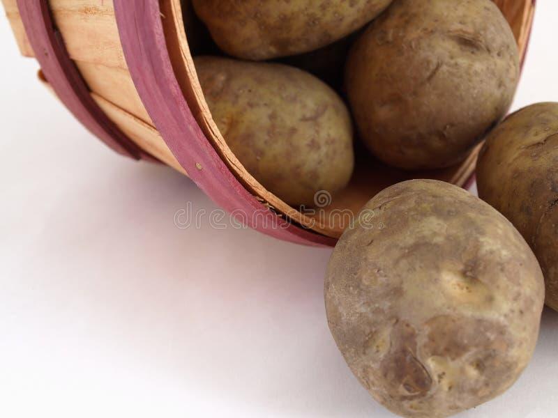 Verschüttete Kartoffeln lizenzfreies stockfoto