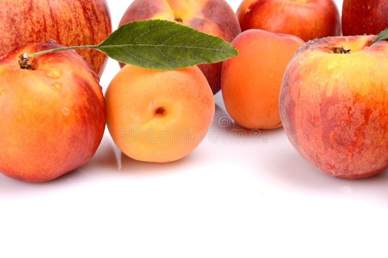 Verscheidene die perziken, abrikozen, nectarines en appelen op wit worden geïsoleerd stock afbeelding