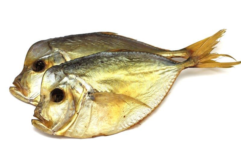 Verscheidene droge vissen Vomero stock foto