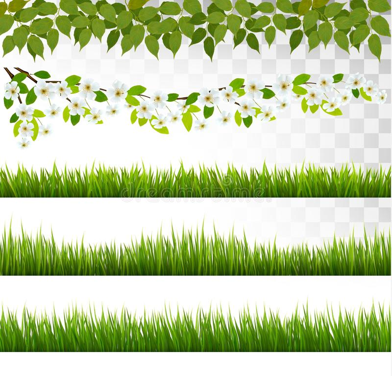 Verscheidene grasgrenzen Vector stock illustratie