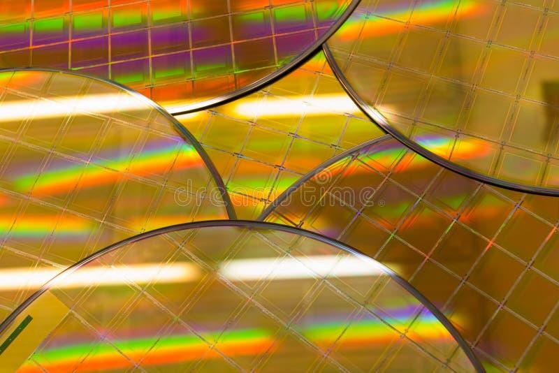 Verscheidene Siliciumwafeltjes met microchips - een wafeltje is een dunne plak van halfgeleidermateriaal, zoals een kristallijn b royalty-vrije stock foto's