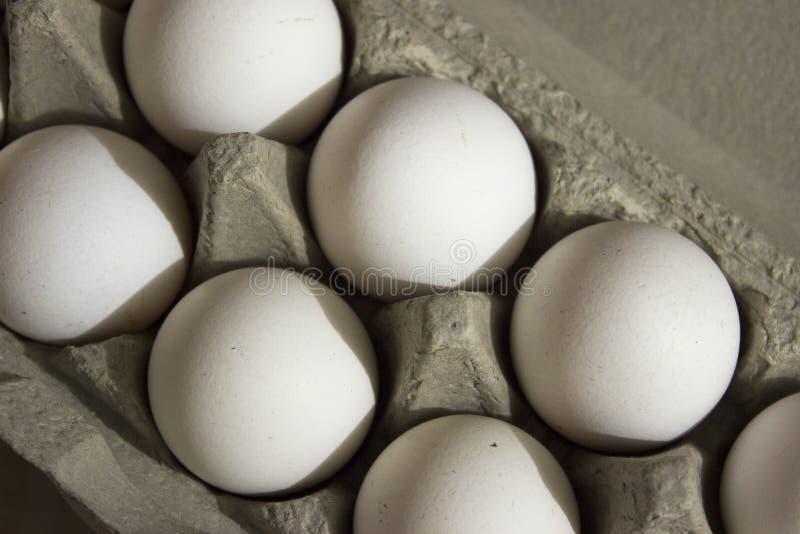 Verscheidene witte eieren in een eikarton royalty-vrije stock foto