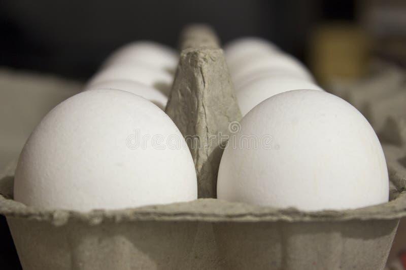 Verscheidene witte eieren in een eikarton stock afbeeldingen