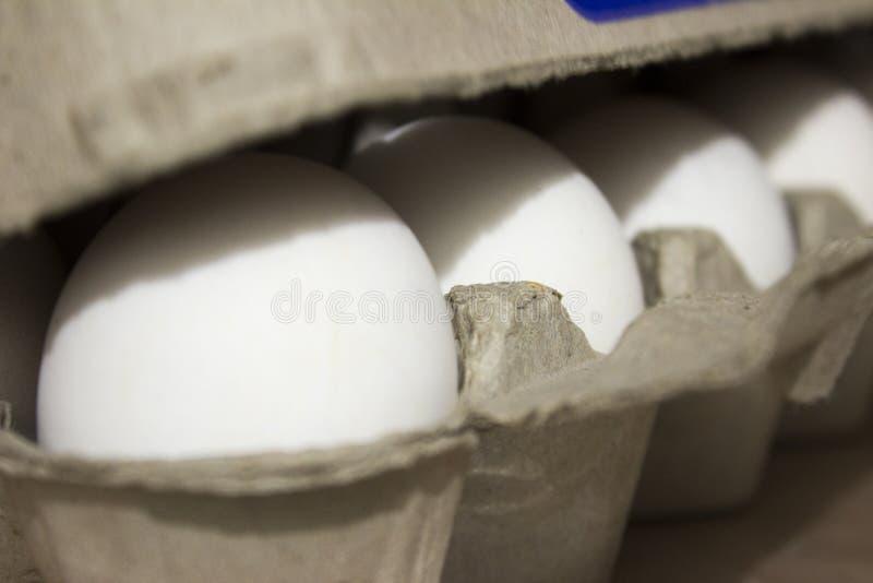 Verscheidene witte eieren in een eikarton royalty-vrije stock afbeelding
