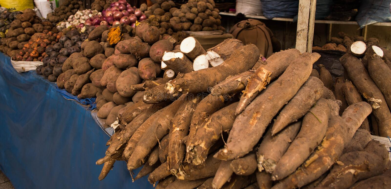 Verscheidenheid van aardappels stock foto