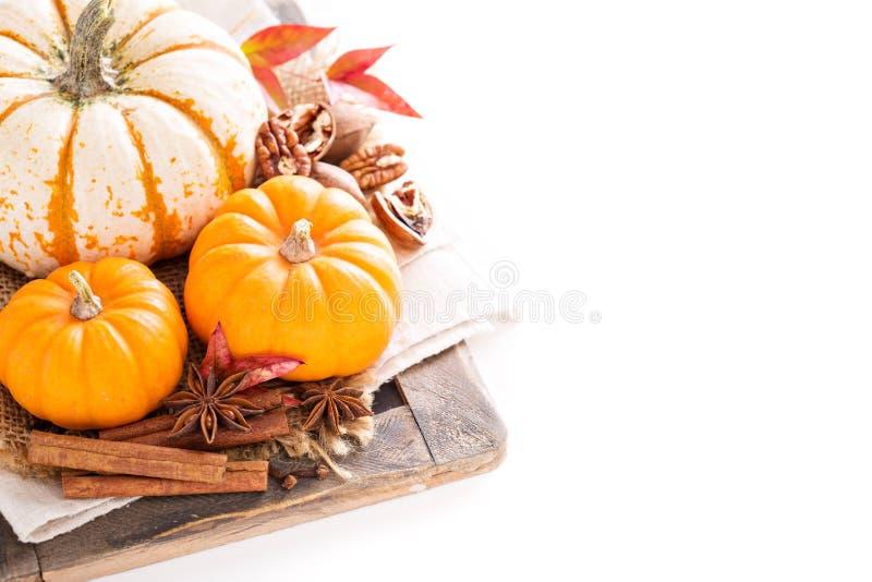 Verscheidenheid van decoratieve pompoenen op witte achtergrond stock fotografie