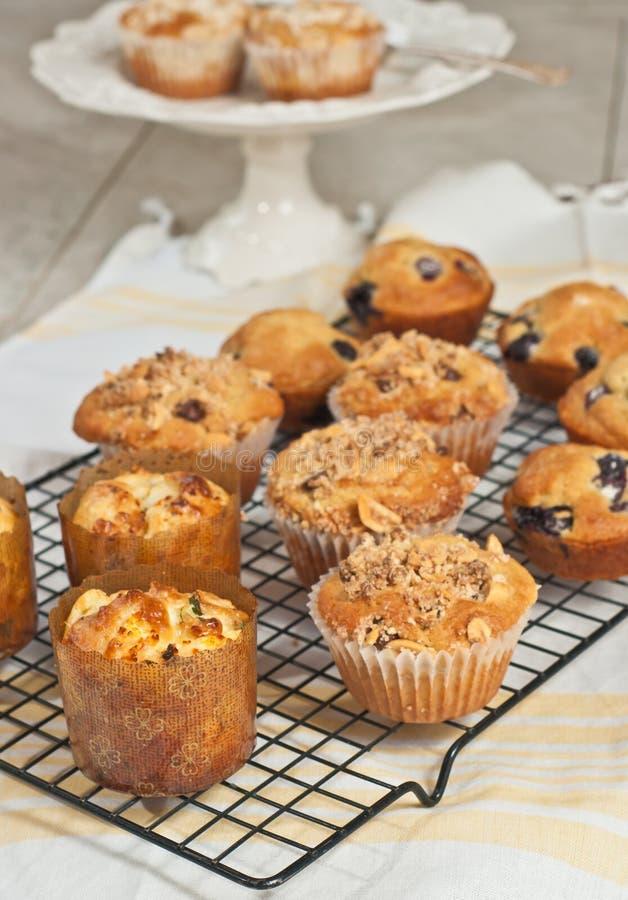 Verscheidenheid van gebakken muffins stock afbeelding