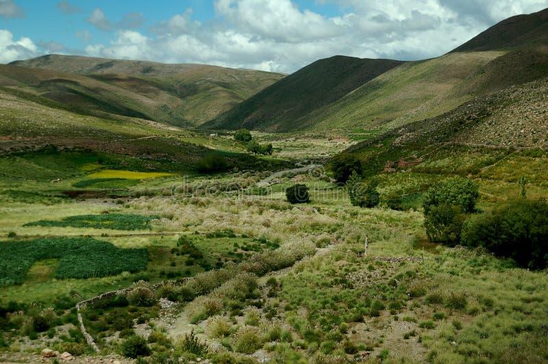 Verscheidenheid van groen heuvelig landschap stock foto's