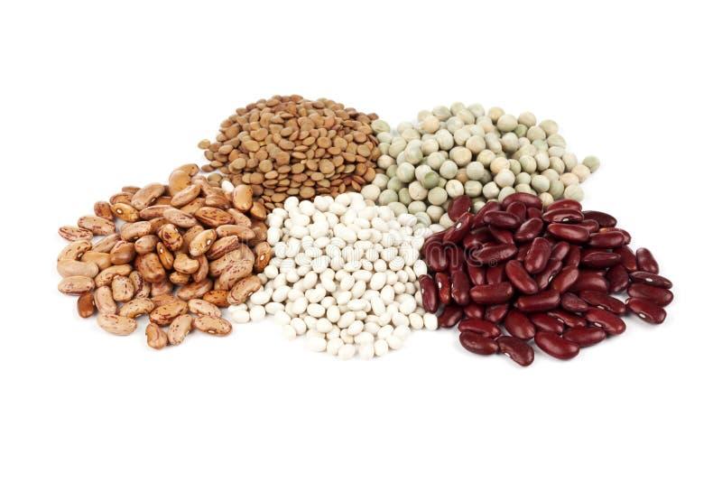 Verscheidenheid van peulvruchten stock afbeelding