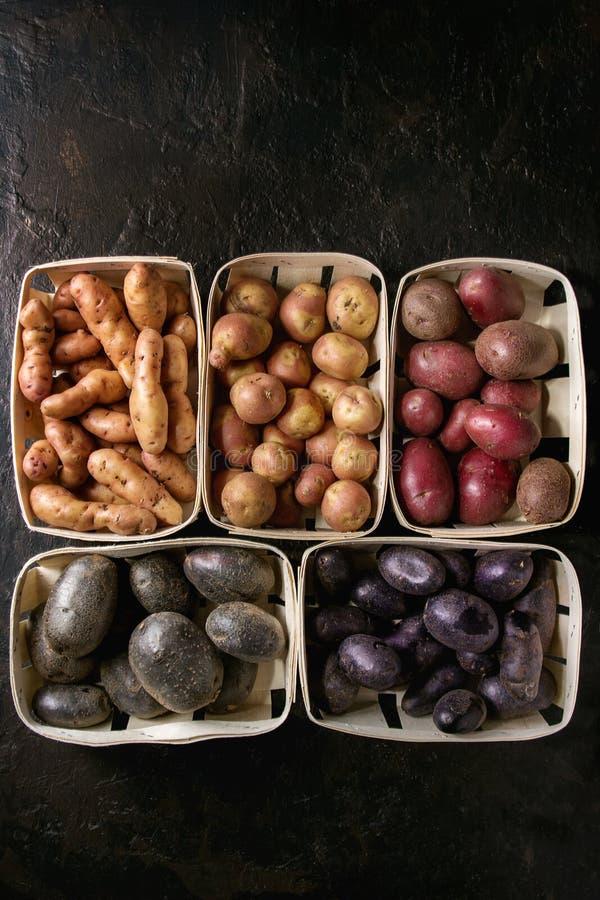 Verscheidenheid van ruwe aardappels stock fotografie