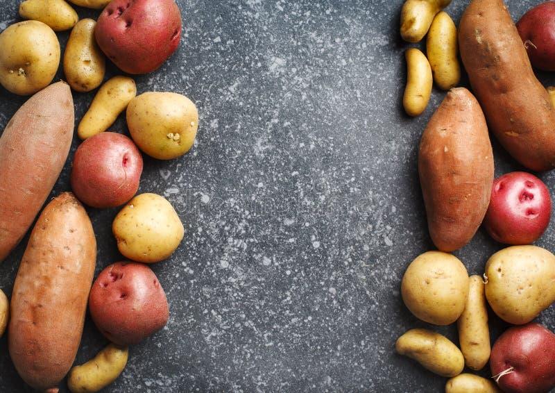Verscheidenheid van ruwe ongekookte organische aardappels: rode, witte, zoete en vingersaardappels over donkere textuurachtergron stock foto's