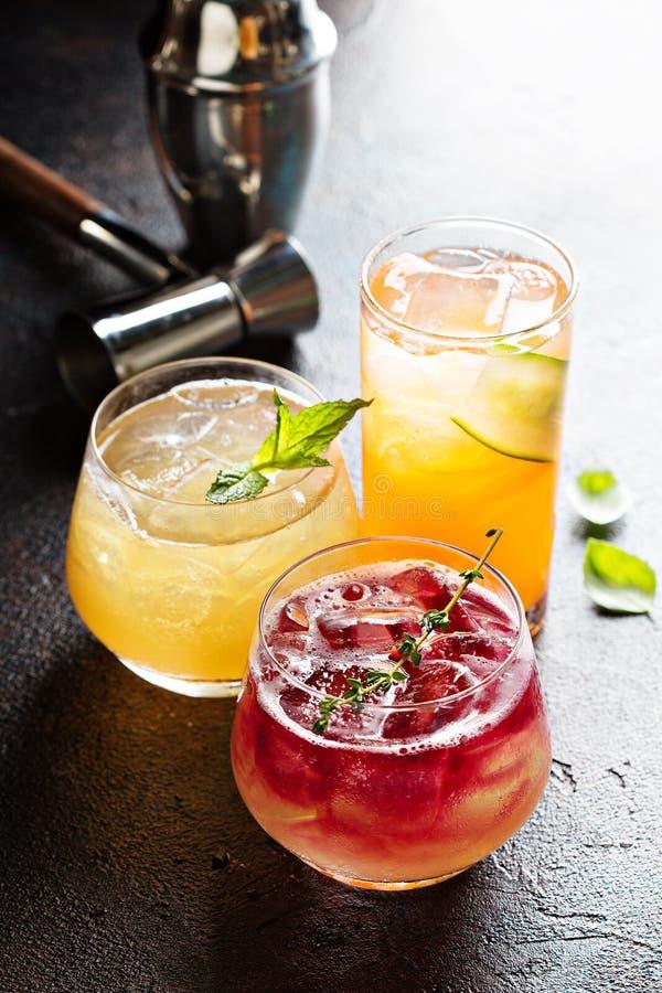 Verscheidenheid van seizoengebonden cocktails royalty-vrije stock foto's