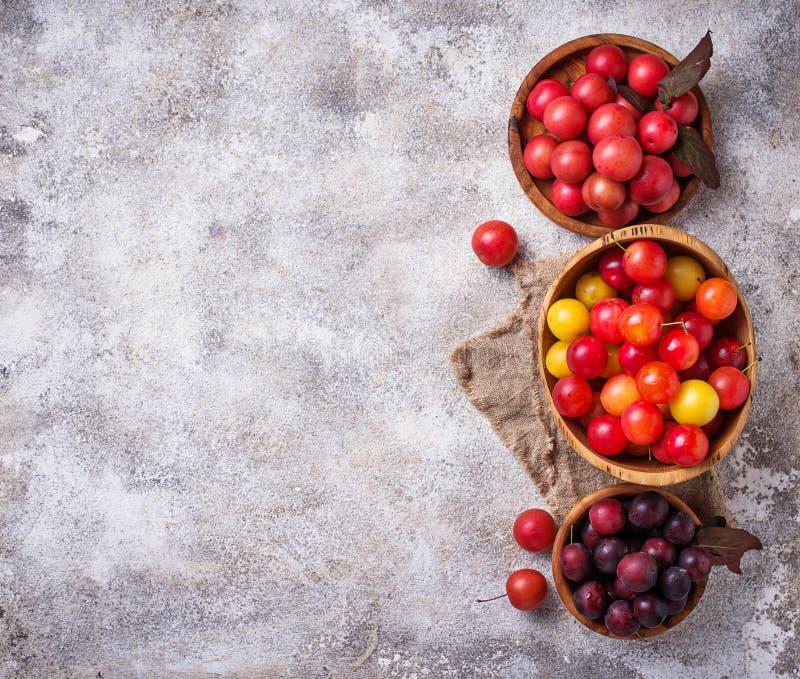 Verschiedene Art der Kirschepflaume in den hölzernen Schüsseln stockfoto