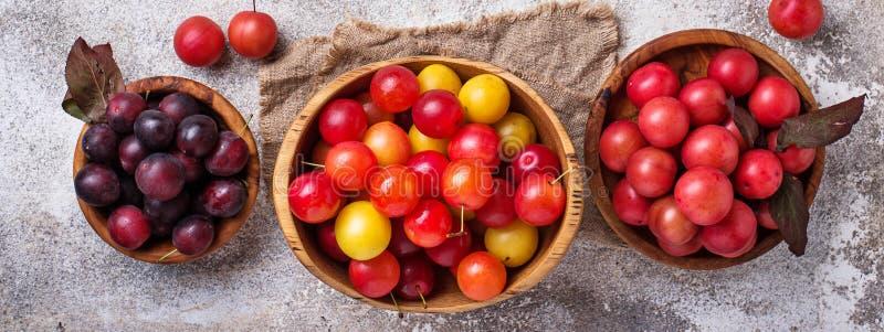 Verschiedene Art der Kirschepflaume in den hölzernen Schüsseln lizenzfreies stockfoto