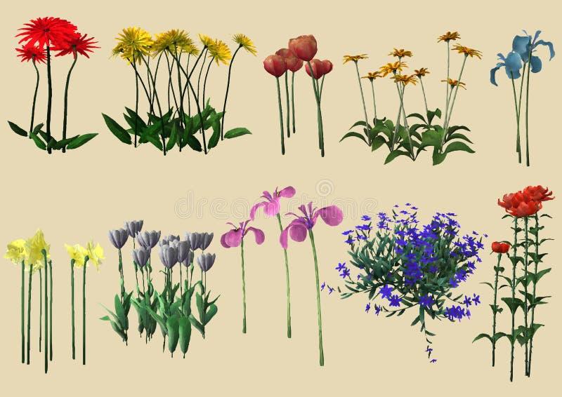 Verschiedene Arten der Blumen lizenzfreie abbildung