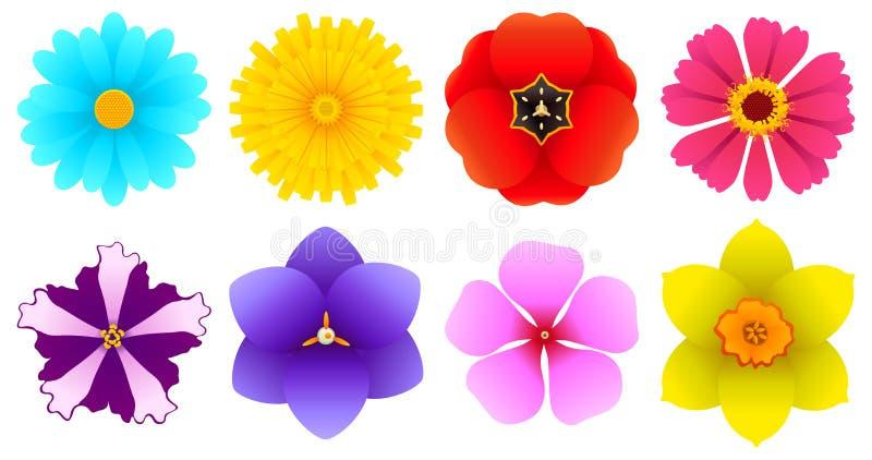 Verschiedene Arten Der Blumen - Draufsicht Vektor Abbildung ...