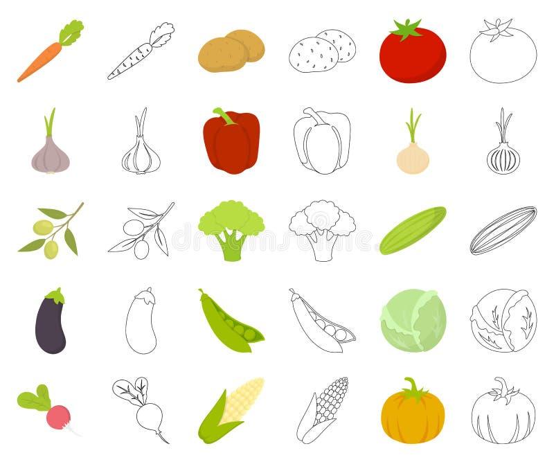 Verschiedene Arten der Gemüsekarikatur, Entwurfsikonen in gesetzter Sammlung für Entwurf r stock abbildung