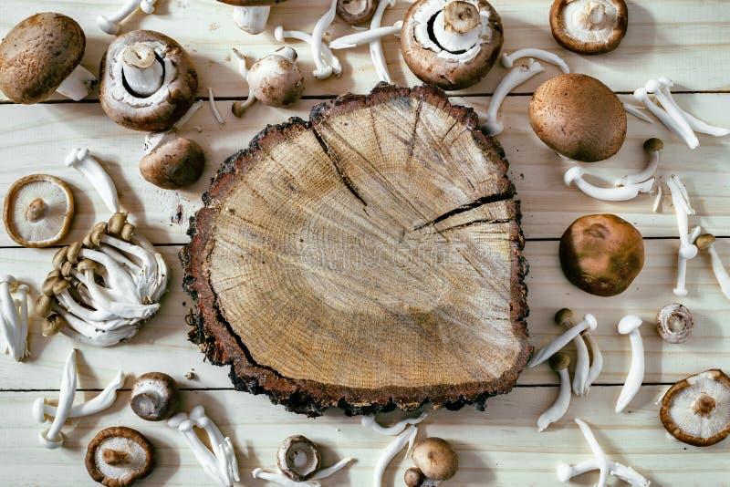 Verschiedene Arten von essbaren Pilzen auf Holztisch stockfotos