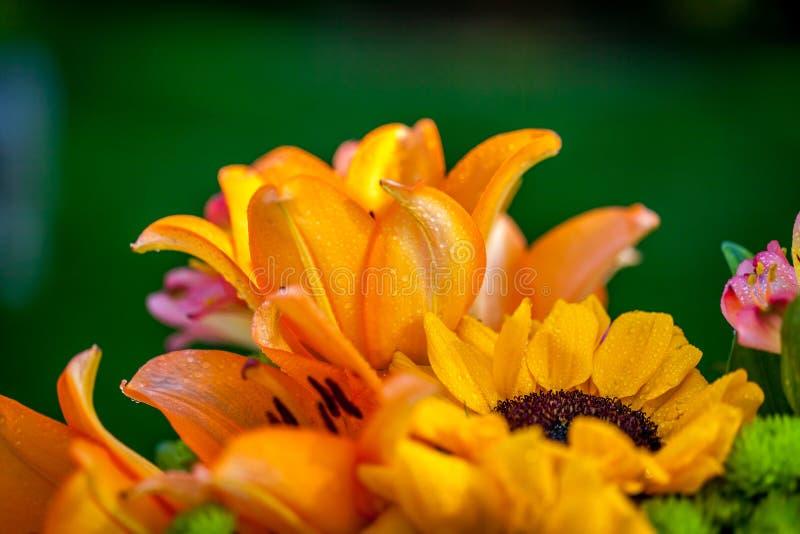 Verschiedene Arten Von Frischen Blumen Stockbild - Bild von blühen ...