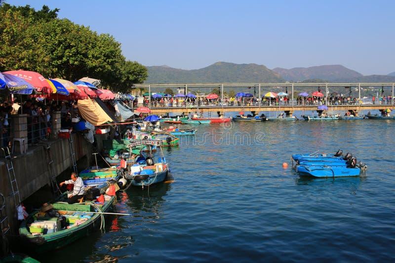 Verschiedene Arten von frischen Meeresfrüchten für Verkauf auf einem Boot in Sai Kung ha lizenzfreies stockbild